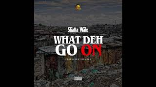 Shatta Wale - What Deh Go On (Audio Slide)