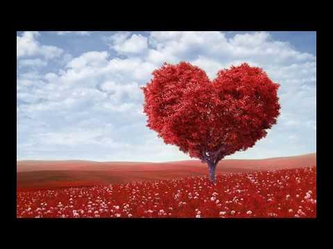 Tamil Best Love Ringtone of 2018 || Download link in the Description