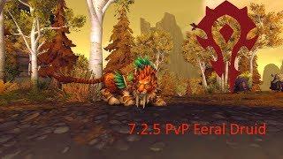 World of Warcraft: 7.2.5 Feral Druid PvP  skirmish/randombattleground