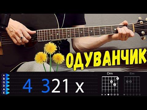 Тима Белорусских - Одуванчик на гитаре. Аккорды песни, разбор
