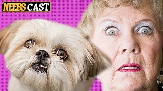 A Dog Story You Won't Believe - Commenting on Comments IS DEAD!!!