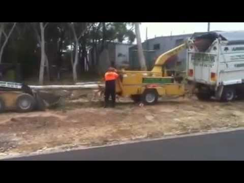 Tree Contractors, Tree Removal Services in Sydney