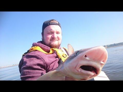 Smoothound fishing at NEWTON