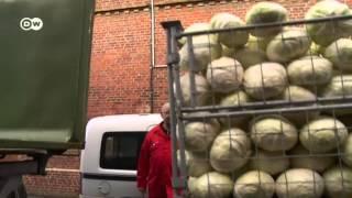 Die Deutschen und ihr Sauerkraut | Euromaxx - Guten Appetit Deutschland