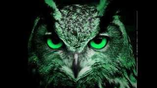 EL SONIDO DEL BUHO REAL - REAL  SOUND  OWL -  carlosmanfaceb...