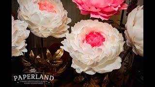 Видеоурок Бумажный пион. Как сделать цветок