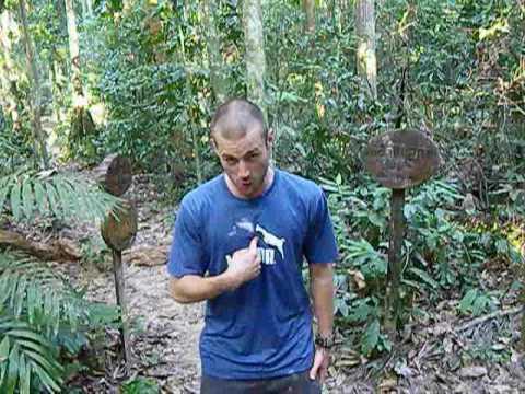 PERU TV: Amazon Animals & Wonders of the World