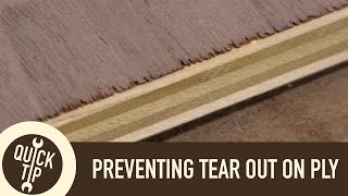 Preventing Tear-out When Crosscutting Plywood