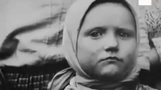 Документальные фильмы. Вторая Мировая Война -  Коллаборация ВОВ