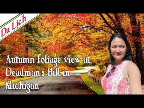 Download Travel Michigan-Autumn foliage view at Deadman's Hill Overlook