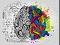 My Brain as a Person