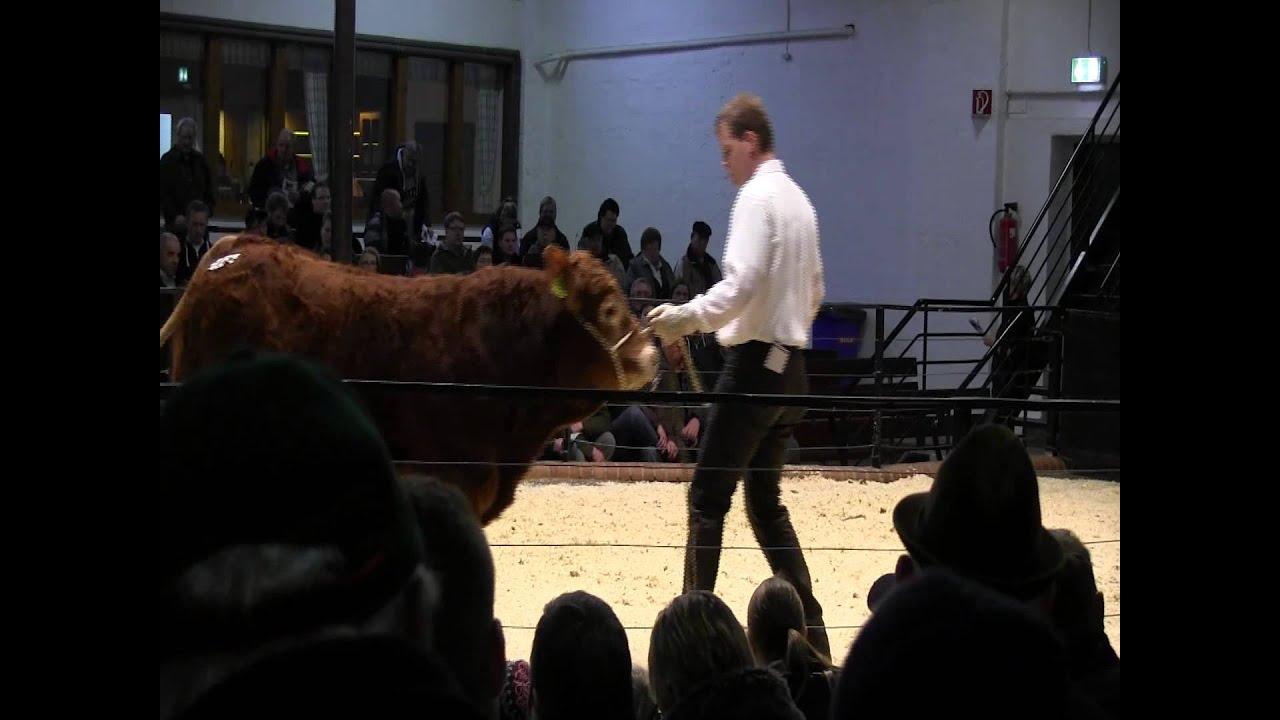 CATTLE.de: 3. Polled Limousin Sale RSH 072