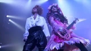 LAREINE - fiançailles (KAMIJO 20th Anniversary Live)