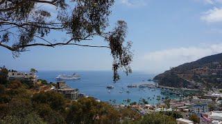 Catalina - 26 Miles Across the Sea promo