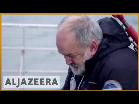 Krill fishing threatens Antarctic ecosystem, warn conservationists | Al Jazeera English