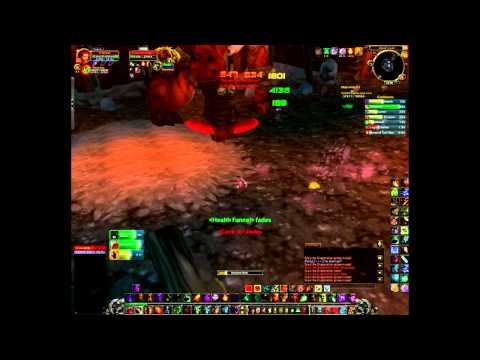Warlock solo Gruul patch 4.0.3