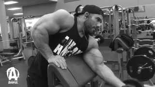 "The Animal Underground: Dorian ""HEAVY D"" Hamilton, Training Arms"