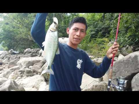 Otro dia de pesca en el cañon del sumidero