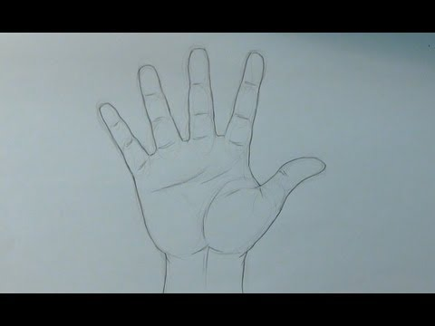 Aprende a dibujar una mano abierta  How to draw an open hand