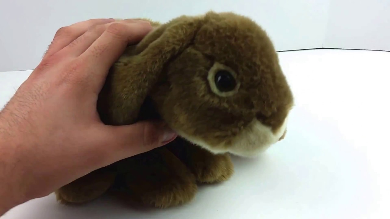 Animal Alley Realistic 12 Brown Bunny Plush Toys R Us Rabbit