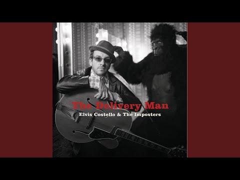 In the Spotlight: Elvis Costello - Cover Me