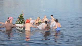 Ёлка в море, новогодняя эстафета... Севастопольские моржи встречают Новый 2018 год