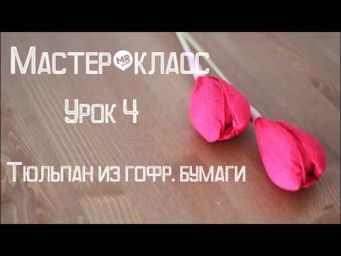 Мастер-класс Букет из конфет Урок 4/Тюльпан из гофре