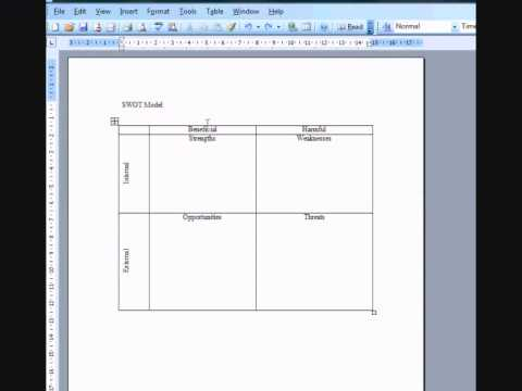 Example SWOT Analysis created using MS Word and SWOT action tracker - format for swot analysis