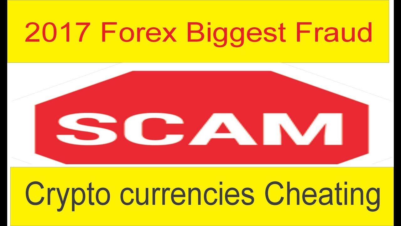 Forex courses review scam fake