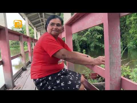 A Vida Ribeirinha na Amazônia - TV ESCOLA