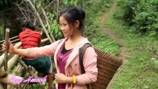 hmong toj siab chat xes
