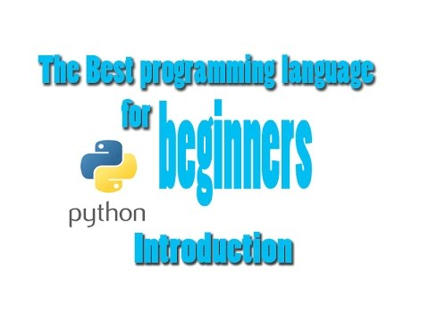 What is the most suitable computer language for beginner ?