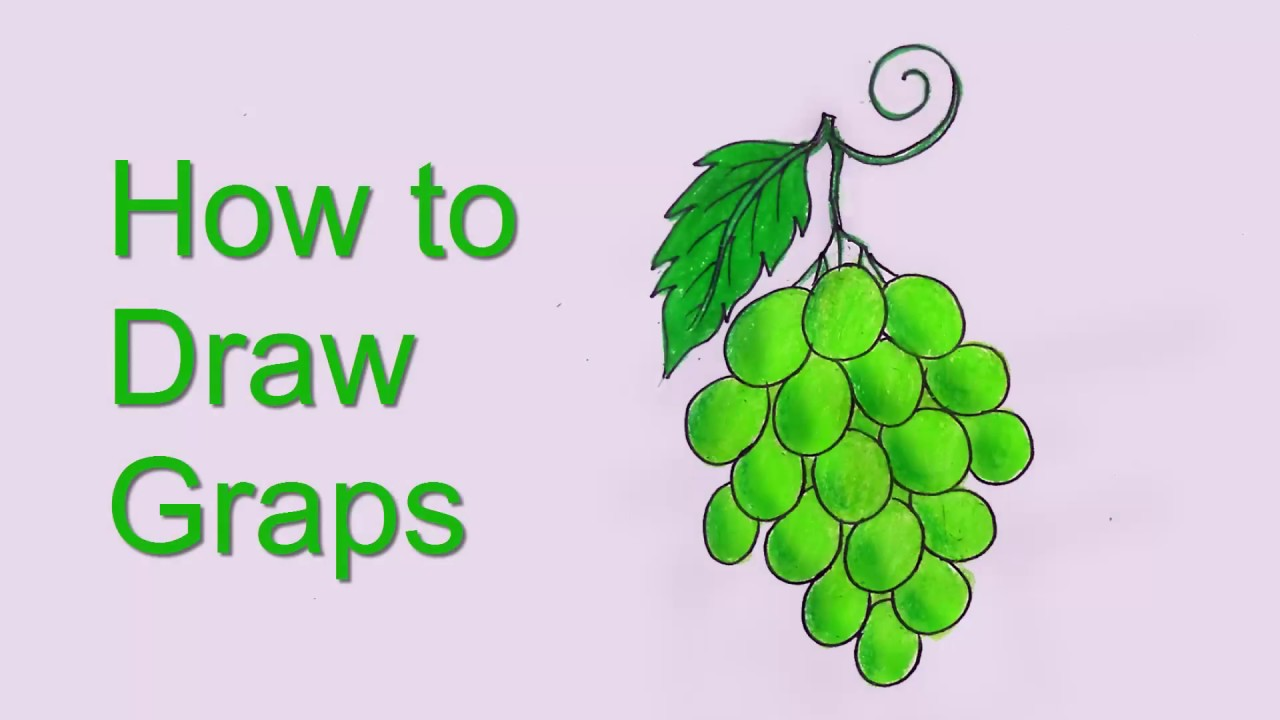How To Draw Grapes Easy Grapes Drawing Step By Step Youtube