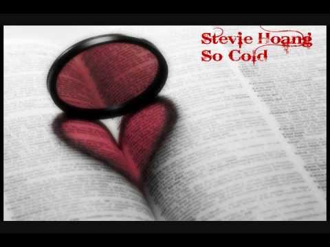 Stevie Hoang - So Cold [HQ]