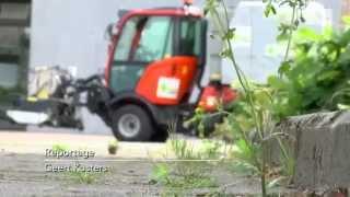 video uit Alternatieve onkruidbestrijding