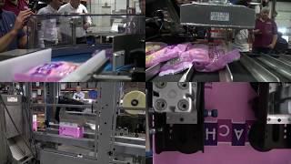 00354 blueprint automation bpa stacking and loading solution 51167 blueprint automation bpa hdcp ice case packer malvernweather Images