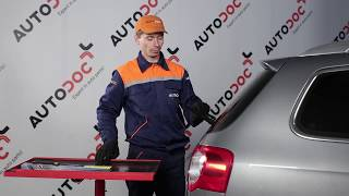 Wie VW AMAROK Platform/Chassis (S1B) Frontscheibenwischer austauschen - Video-Tutorial