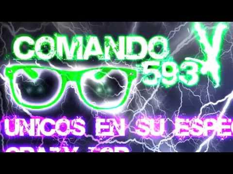 Comando 593