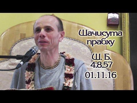Шримад Бхагаватам 4.8.57 - Шачисута прабху