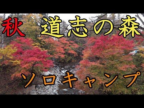 【ソロキャンプ】秋の道志の森キャンプ場で紅葉狩り