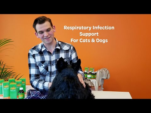 NHV Resp Aid - Respiratory Infection Support for Cats & Dogs