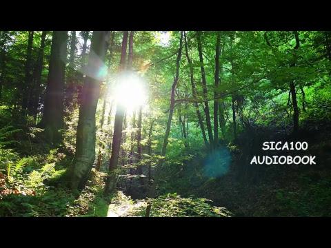 AUDIOBOOK HD Audio - Nature Sounds Relaxing Wild Forest Meditation Study Sleep Spa Sounds Bird Song