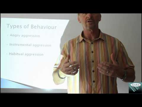 types-of-agression---ioda-ltd---delivering-impactive-management-development-training-solutions