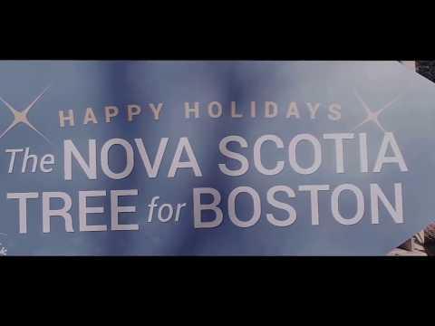 Boston Common Christmas tree from Nova Scotia Canada 11/21/2017