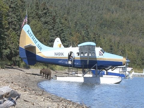 Journey to the Bears at Brooks River in Alaska