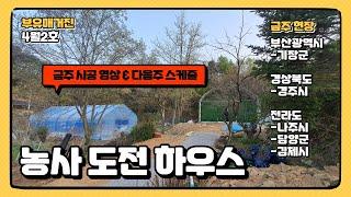 부유매거진4월2호. 농사도전 비닐하우스 + 소형창고 비…