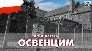 Еп17 #34. Концлагерь «Освенцим».