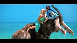 прикольная фотосессия со слонами и церемония на Пхукете