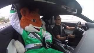 Helio Castroneves gives Pocono Raceways Tricky The Fox a ride