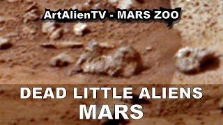Mars: Dead Little Aliens: Tiny Curiosity Rover Anomalies.